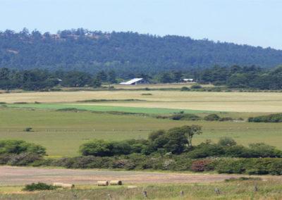 farms-tour-1280x434-temp